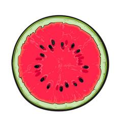 Half of ripe watermelon top view sketch style vector
