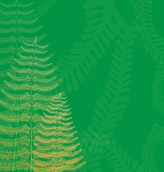 Floral background with fern fronds vector