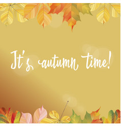 A frame of different autumn leaves ready template vector