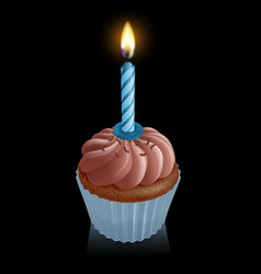 Chocolate fairy cake cupcake with birthday candle vector