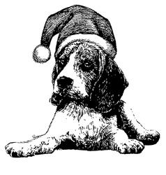 Christmas beagle dog vector