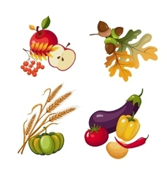 Vegetables and fruits stalks autumn leaves vector