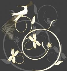 paradise bird vector image