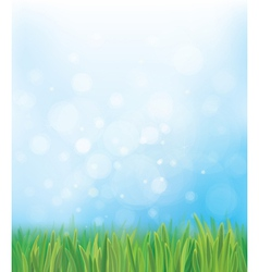 Grass sky background vector