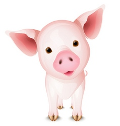 Little pig vector