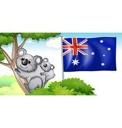Australia flag and koala on trees vector image