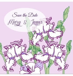 Background with three irises vector image
