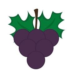 Grape bunch icon vector