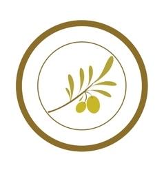 Olive oil food vector image