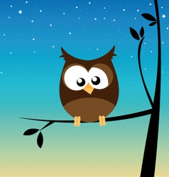 Owl in a tree vector