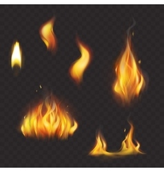 Set of realistic flame tongues isolated on a dark vector