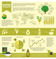 Olives infographics set vector image vector image