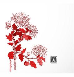 Red chrysanthemum flowers in oriental style on vector