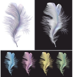 Tender air feather vector