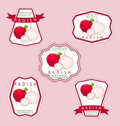 The theme radish vector