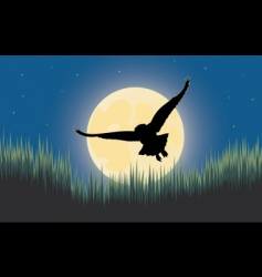 owl night hunter vector image vector image