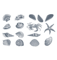 Sketch ocean nature set vector