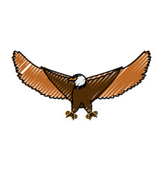 Hawk eagle symbol vector