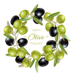 Olive wreath banners vector