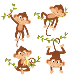 Set of isolated monkey hanging on vine vector