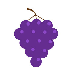 Fresh grape brunch icon healthy food lifestyle vector