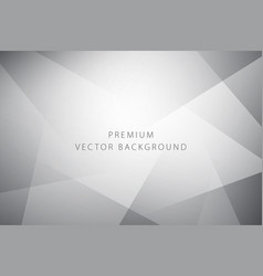 abstract premium background vector image vector image