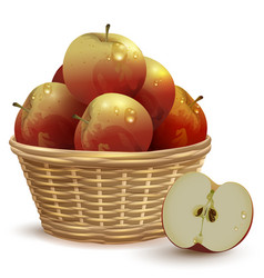 full wicker basket with red apples vector image