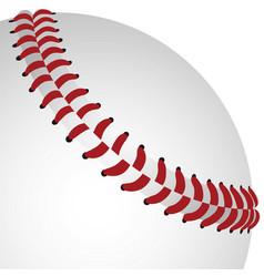 Baseball closeup vector