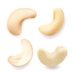 Cashew nut realistic set vector