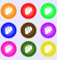Eggs icon sign big set of colorful diverse vector