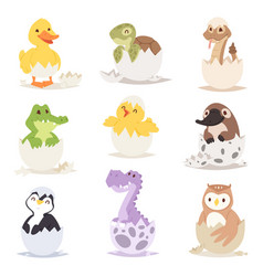 Cute new born animals in eggs easter farm holiday vector