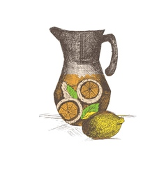 hand drawing jug with lemonade vector image