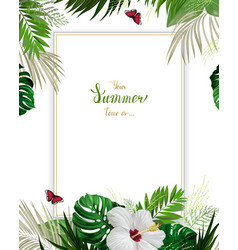 Universal invitation congratulation card with vector