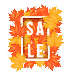 autumn leaves with sale label vector image vector image