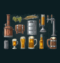 Beer set with tap class can bottle and tanks vector