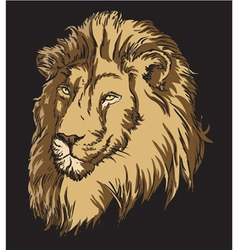 t-shirt design with lion vector image
