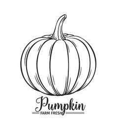 Hand drawn pumpkin icon vector