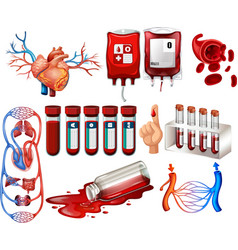 Human blood and organs vector