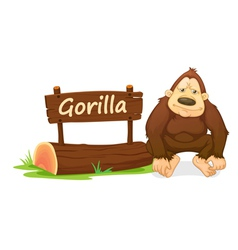 Cartoon zoo gorilla vector