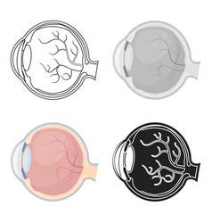 eyeball icon in cartoon style isolated on white vector image