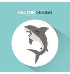 shark icon design vector image vector image