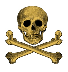 Skull and crossbones in engraved style vector image