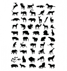 animal vector image