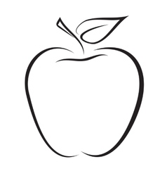 sketch of apple vector image vector image
