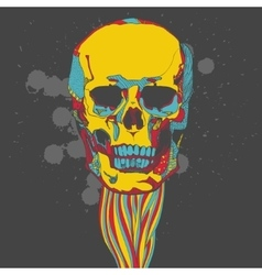 Colorful skull with ornament vector image