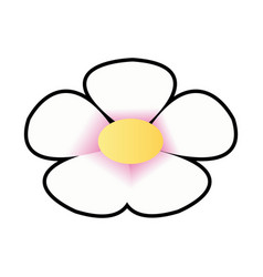 flower spring flora botanical plant image vector image