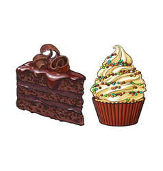 hand drawn desserts - cupcake and piece of layered vector image vector image