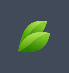 Letter b eco leaves logo icon design template vector