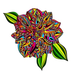 Rainbow Multicolored Dahlia vector image