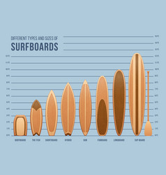 different sports surfboards for surfing set vector image